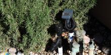 Granada Hills Landscaping & Hot Water Solar 11, SolReliable, CA